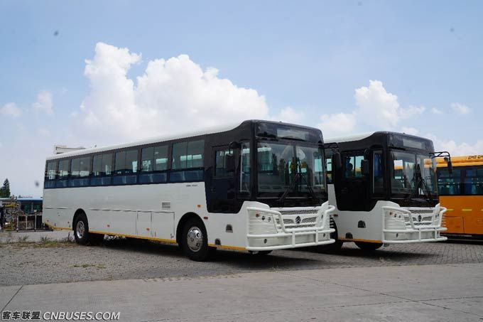 信任——金旅出口津巴布韦50台公交车背后的故事(图1)